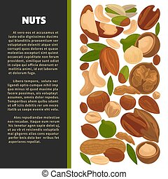Nuts organic nutrition and raw diet information poster...