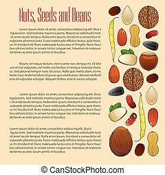 Nuts, seeds and beans nutrition vector poster