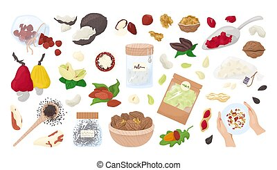 Nuts, seeds isolated on a white collection of vector illustrations. Healthy food , organic almonds, walnut, hazelnut and peanuts. Vegetarian healthy snack or diet. Kernels. Seeds nutrition.