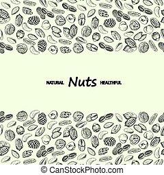 Nuts vector. Hand drawn vintage illustration.