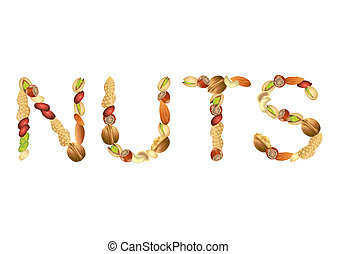 Nuts word from seeds vector - Nuts word from different seeds...