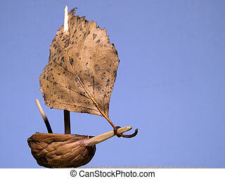 and leaf as sail