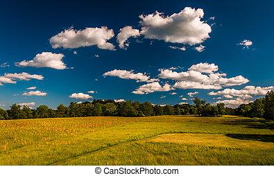 nuvens, antietam, sobre, maryland., nacional, campo batalha, prado