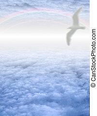nuvens brancas, pássaro