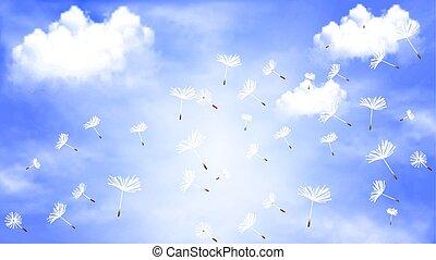 nuvens, céu, contra, voando, dandelion