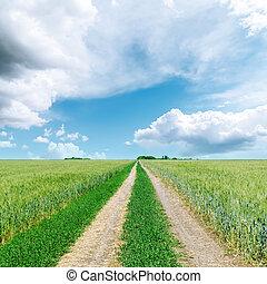 nuvens, sobre, campo, verde, baixo, estrada