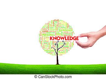 nuvola, forma, scegliere, albero, affari, conoscenza, isolato, mano, fondo, concetto, parola, bianco