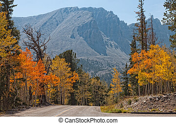 NV-Great Basin National Park - Autumn is a wonderful time to...