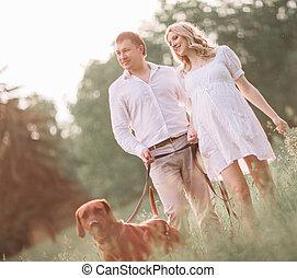 nyár, övé, terhes, feleség, jár, nap, férj, boldog
