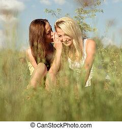 nyár, ülés, fiatal, két, leány, fű, barátok, nap