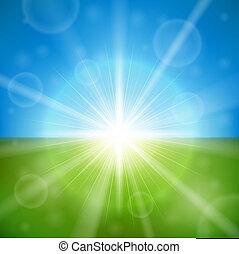 nyár, fényes, vektor, nap, háttér.
