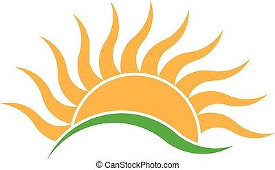 nyár, napkelte, lenget, küllők, logo., vektor, jel, tervezés