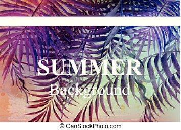 nyár, szüret, utazás, háttér, bitófák, pálma, vector., tropikus, kártya