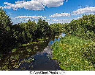 nyár, táj, noha, folyó, alatt, oroszország
