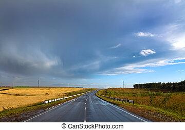 nyár, táj, noha, száraz, vidéki út, és, cloudy ég