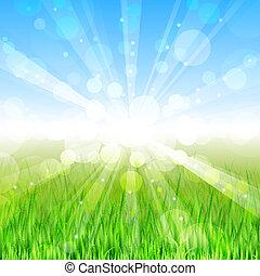 nyár, vektor, -, nap, háttér