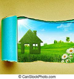 nyár, zöld hegy, szépség, nap