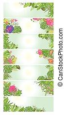 nyárias, virágos, szalagcímek, noha, tropical virág