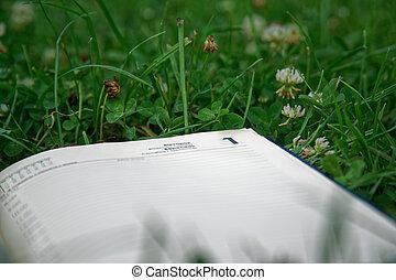 nyílik, zöld, jegyzetfüzet, liget, fű