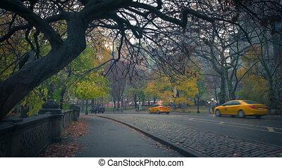 Central park at rainy morning, New York City, USA