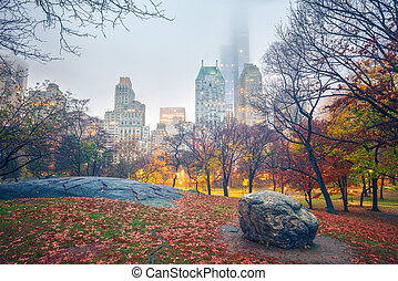 NY Central park at rainy morning - Central park at rainy ...