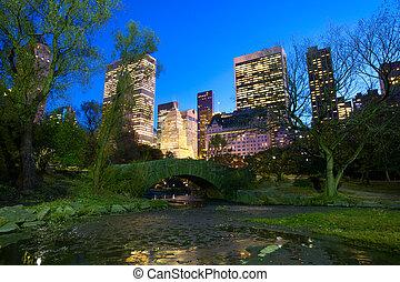 nyc, parque central, por la noche