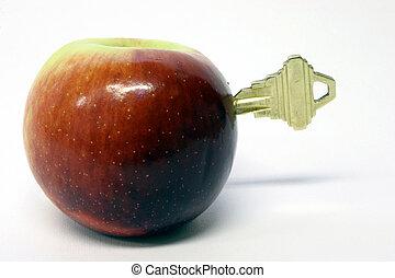 nyckel, till, hälsa