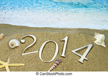 nytt år, 2014, stranden