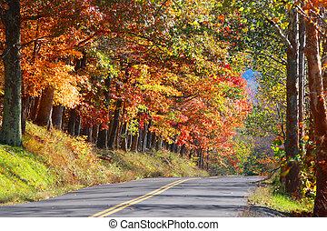 nyugat virginia, autóút, vidéki
