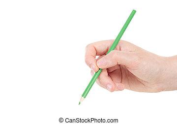 ołówek, zielony, kaukaski, ręka