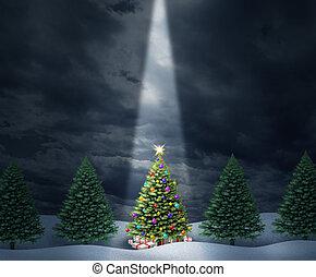 oświetlany, drzewo