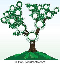 o, árbol, ilustración, nombres, lugar, familia , vector, ...