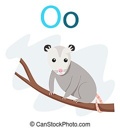 O alphabet vector animal