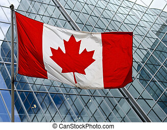O Canada - The Canadian flag against a high rise building in...