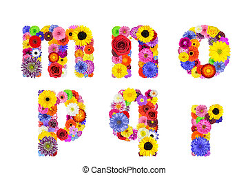 o, cartas, alfabeto, -, aislado, r, m, floral, n, blanco, q,...