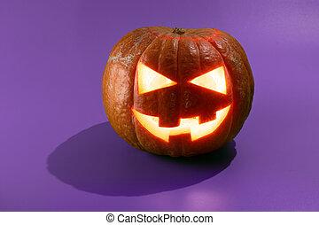 o, gato, calabaza halloween, o'lantern
