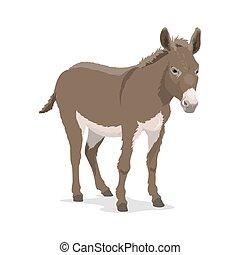 o, granja, mula, bestia, animal, carga, asno, burro