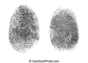 o, huella digital, conjunto, aislado, thumbprint