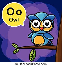 O Owl color cartoon and alphabet for children to learning vector illustration eps10