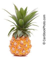 o, tropical, ananas, fruta, piña