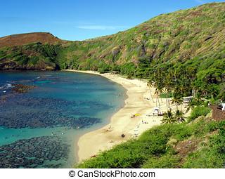 oahu, bucht, hawaii, hanauma