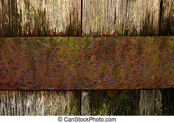 A section of an old oak barrel, with a rusty band of metal holding the oak boards in place.