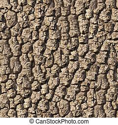 Oak Bark. Seamless Texture. - Bark of Oak Seamless Tileable...