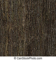 Oak bark texture - Oak bark tile texture