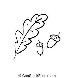 Oak. Branch. Isolated acorns on white background