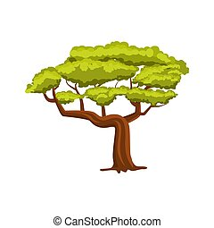 Oak green tree vector icon