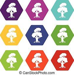 Oak icon set color hexahedron