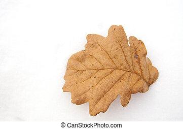 oak leaf and snow