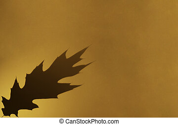 Oak leaf grey shadow on orange color background. Flat lay, top view, copy space. Minimal autumn, halloween concept. Overlay effect for photo.