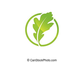 Oak leaf icon Green color in a circle vector illustration.